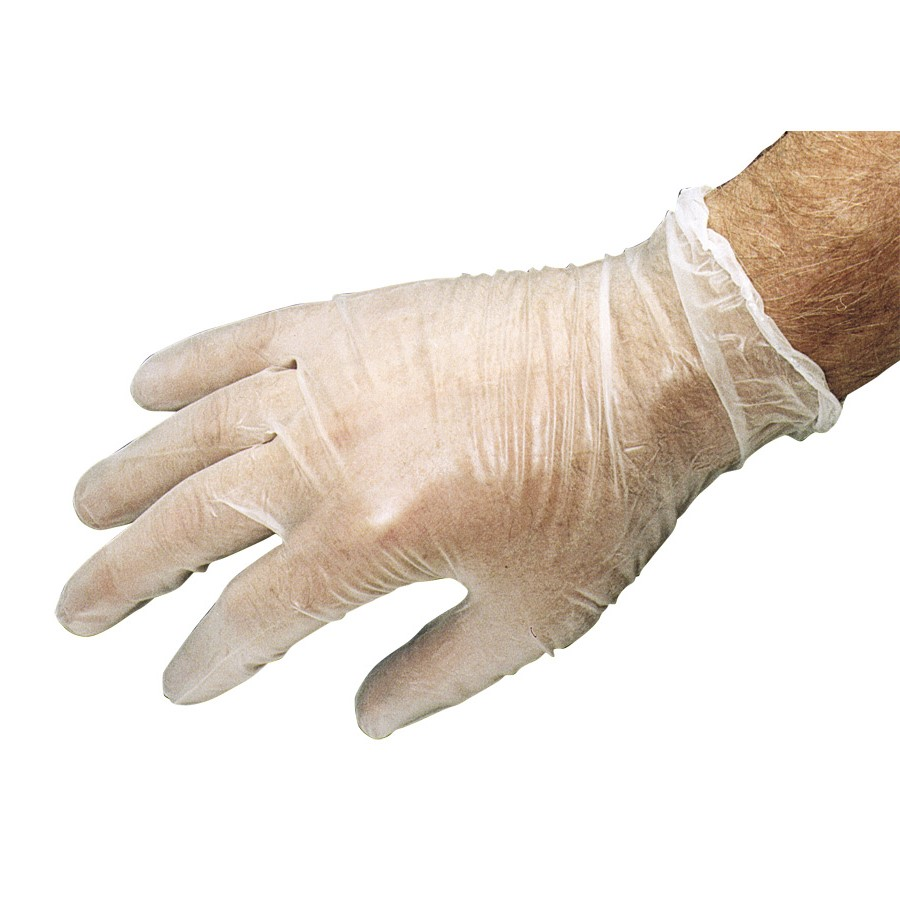 Vinyl Disposable Gloves (Large/9)